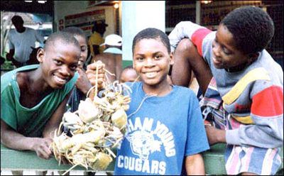 Tobago boys catch blue crabs for dinner on their way home