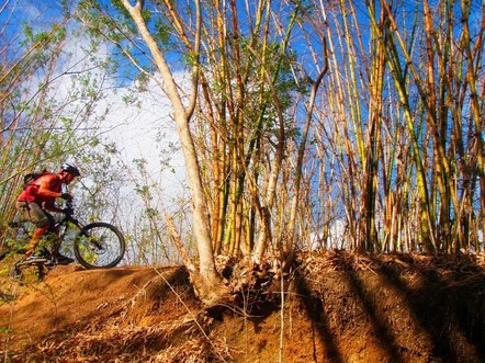 Mountain biking in Tobago