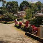 pbv-gardens-and-villas